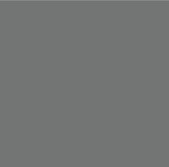 14=Argento cool gray 9 c
